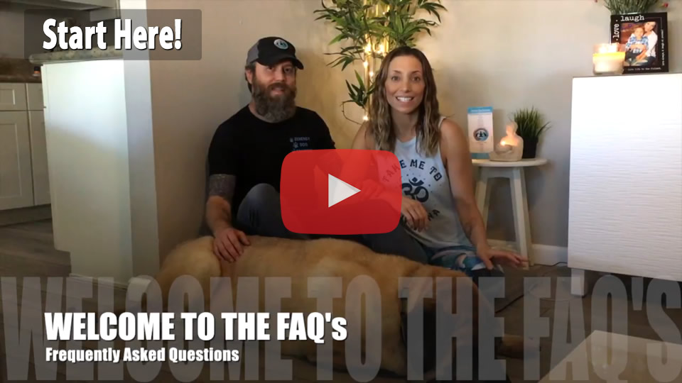 FAQ Video - Watch first!